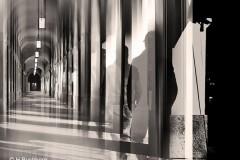 Heike_Buchborn__Der_Schatten_im_Hofgarten