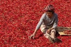 Franz_Vielhuber_Red_hot_chili