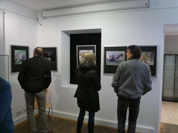 You are currently viewing Ausstellungen Museum Grafing
