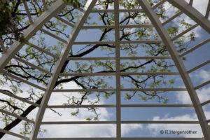 Botanischer Garten München